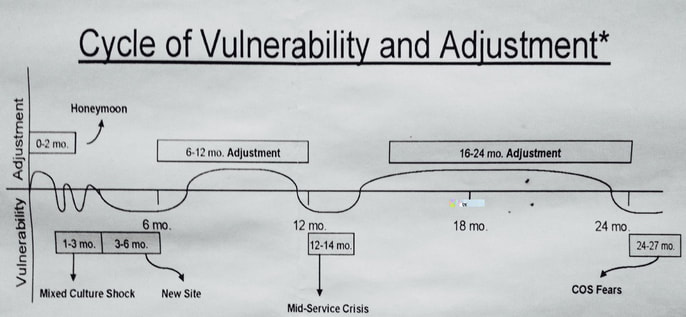 Cycle of vulnerability and adjustment, mental health.